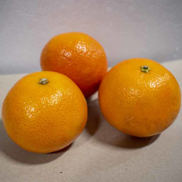 Picture of Easy Peeler Orange (80)