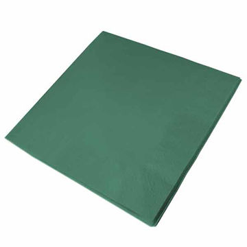 Picture of 33cm/2 ply Mountain Pine Napkins (20x100)
