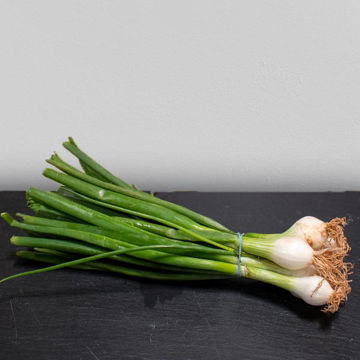 Picture of Spring Onions (12)