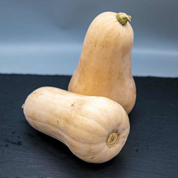 Picture of Butternut Squash (Each)