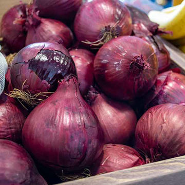 Picture of Red Onions (20x1kg)