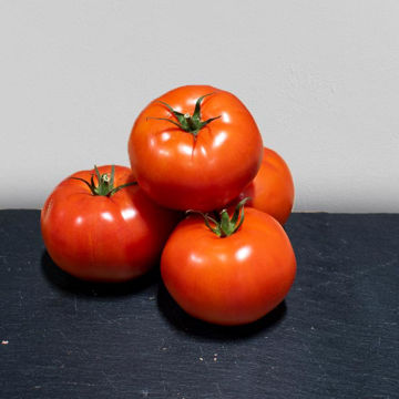 Picture of Beef Tomatoes (Each)