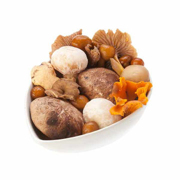Picture of Woodland Mushroom Mix (10x600g)