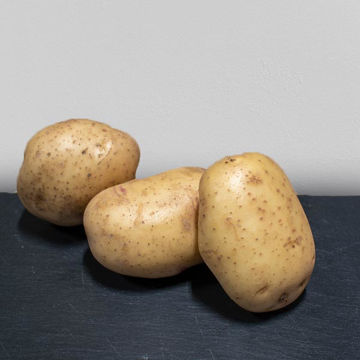 Picture of Baking Potatoes 40s (15kg)
