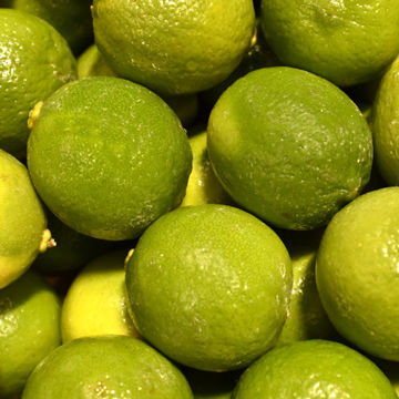 Picture of Lime (54)