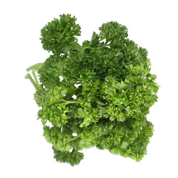 Picture of Curly Parsley (250g)
