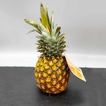 Picture of Fresh Pineapple Large (9)