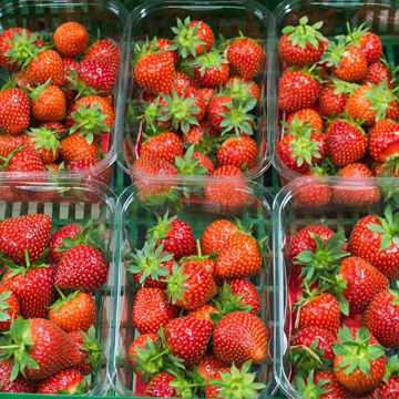 Picture of Fresh Strawberries Punnet (8x500g)