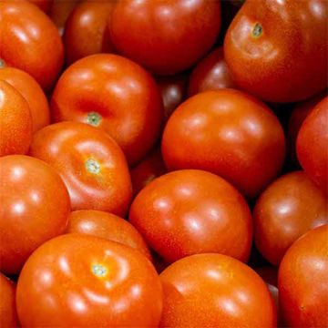 Picture of 47/57mm Tomatoes (1kg Wgt)